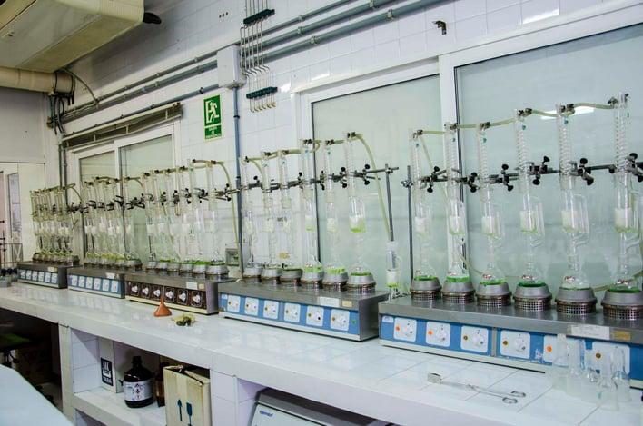 Testing Fake Olive Oil