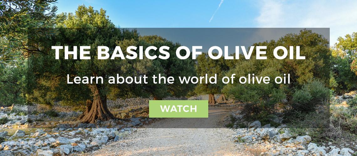 The Basics of Olive Oil