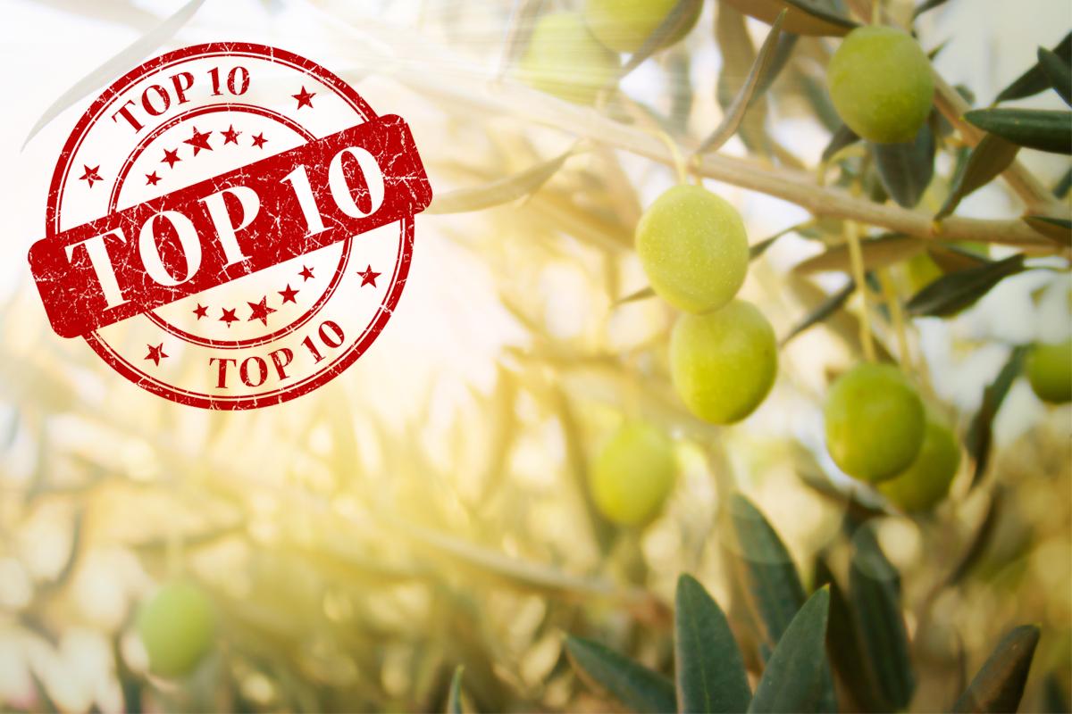 NAOOA_Top10.png
