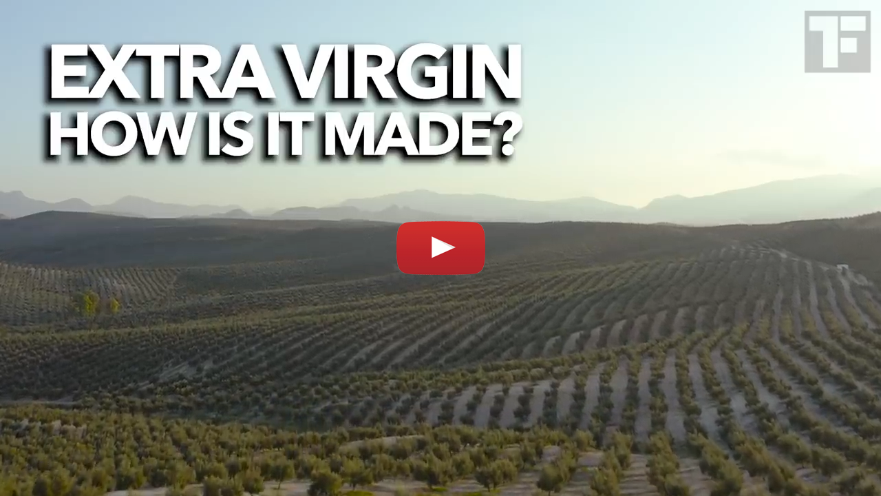 Segment 1. Introduction to the World of Olive oil (16 minutes)